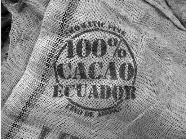 el árbol del cacao mayra monobe