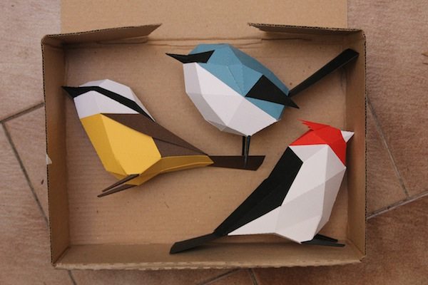 aves de papel guardabosques
