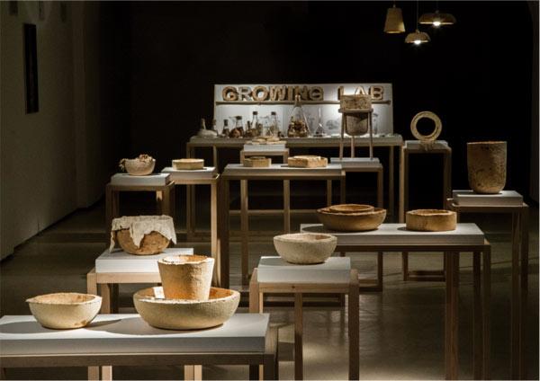 The Future of Plastic, Maurizio Montalti