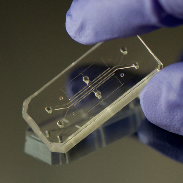 Organs-on-a-chip, Donald Ingber y Dan Dongeun Huh, 2015.