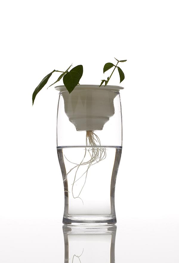 la plantación, una nueva dimensión del reciclaje, por alicja patanowska