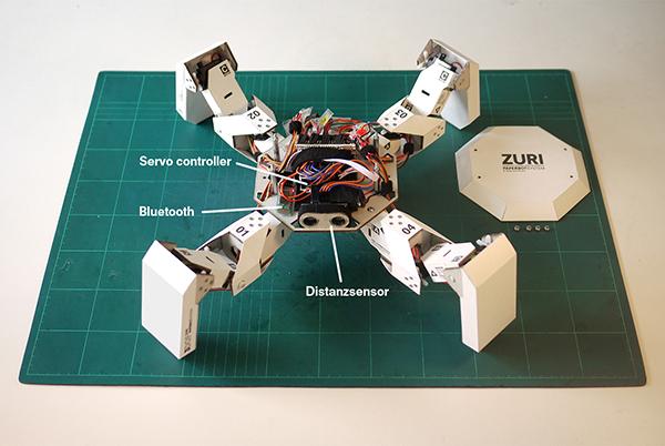 zuri de zoobotics, el robot de cartón
