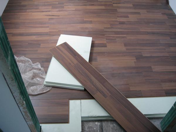Suelo de Contiene una Casa, 2011.