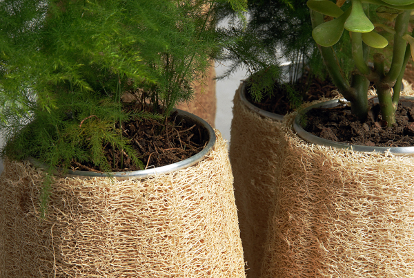 Lufa series objetos fabricados con esponja de lufa por - Esponja natural vegetal ...
