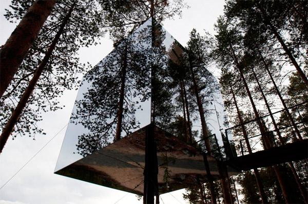 Hotel Tree_