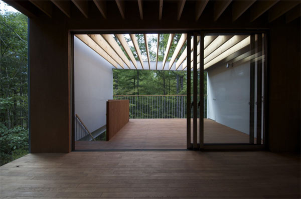 Pilotis in a forest, Go Hasegawa & Associates