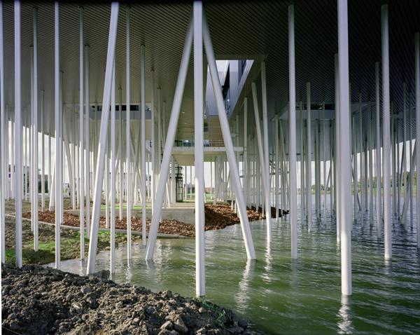 Aluminium Box, un bosque de metal sobre el agua