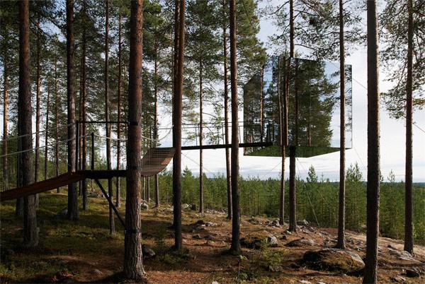 Hotel-tree-001.jpg
