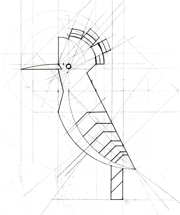 bocetos-aves_09.jpg