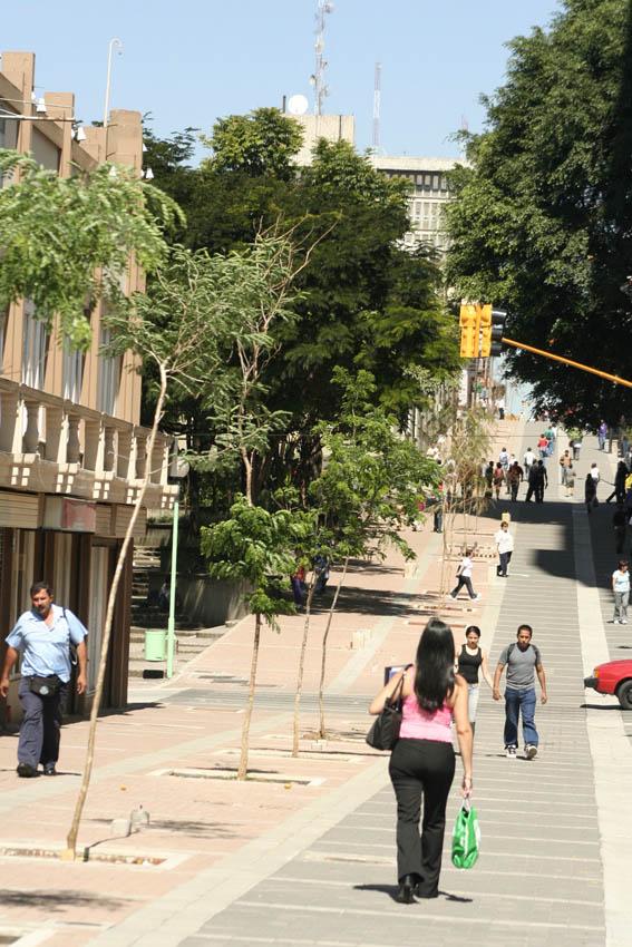 Jimena Ugarte: Diseño para la ciudad