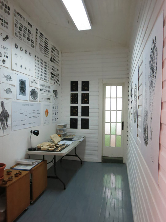 TEORéTica: Sala Poligráfica