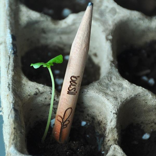 Srpout, un lápiz que quiere ser una planta