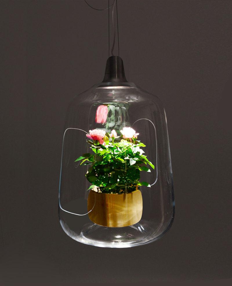 Milo, la lámpara-invernadero de Lightovo