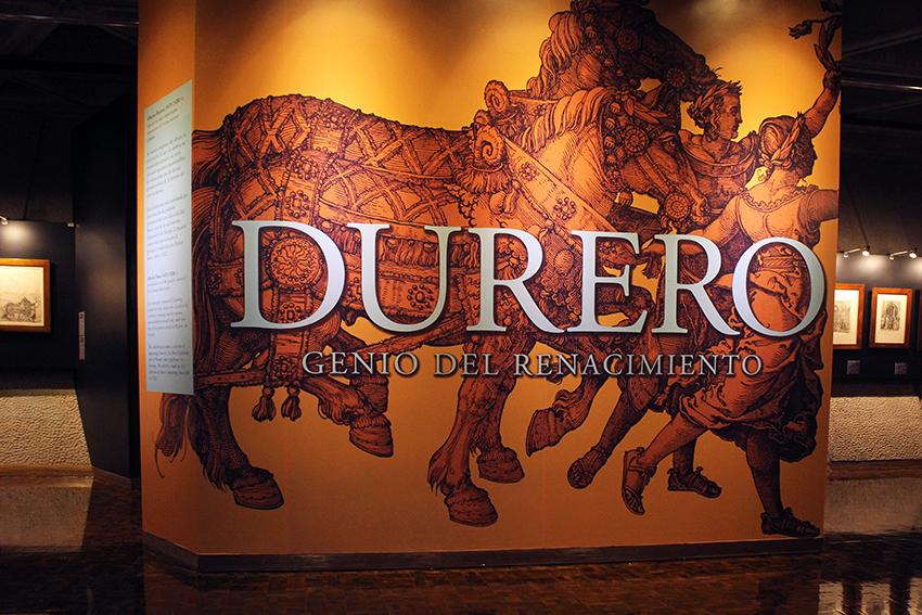 Durero, Museos Banco Central