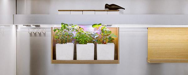 Los sistemas de jardinería de Bulbo