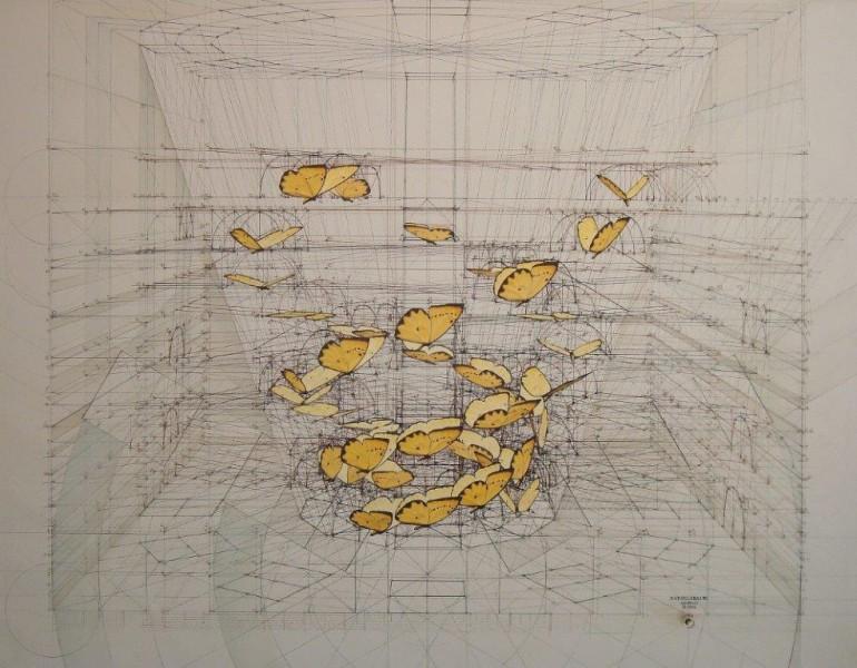 Rafael Araujo, Fibonacci y el vuelo de una mariposa