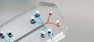 Organs-on-a-chip, ganador del Design of the Year Award 2015
