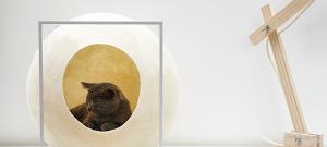 Meyou, mobiliario para gatos de Aude Sanchez y Guillaume Gadenne