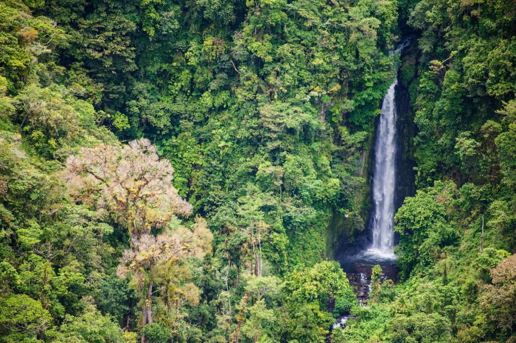 Una catarata en la montaña. © Fundación Árboles Mágicos.