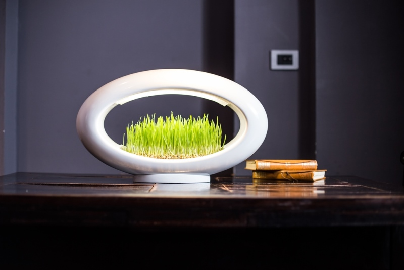 Grasslamp, la lámpara-huerta de Marko Vuckovic