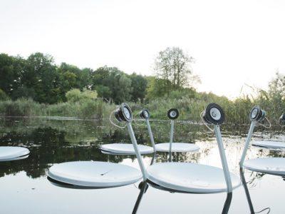 Swans, Marco Barotti, 2015. ©Marco Barotti