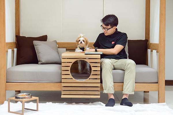 PET de Deesawat, las mascotas al sofá
