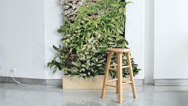 El jardín vertical de William Root