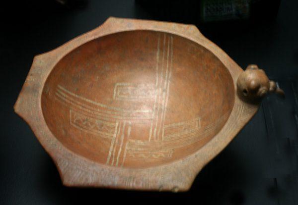 Escudilla del Pacífico Norte, cuya forma es heptagonal irregular. © LFQ.