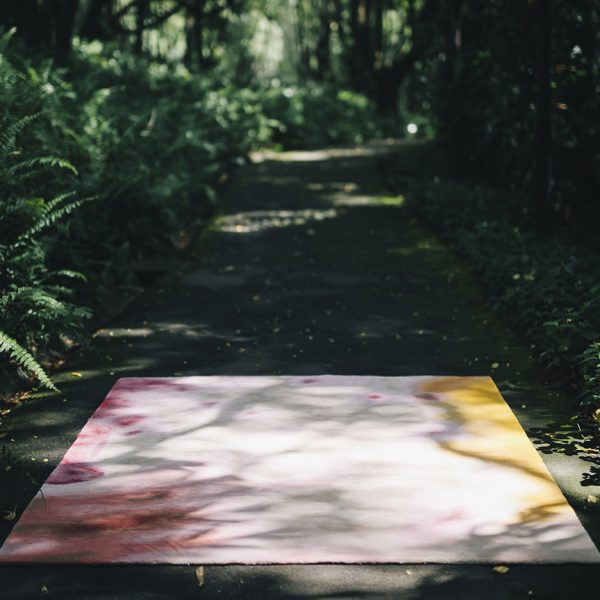 La exploración de la selva tropical, una alfombra como puerta hacia el jardín secreto, The Tropicals, The Rug Makers and Outofstock, 2016.