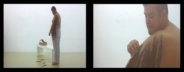 """Naufus Ramírez Figueroa, """"Feather Piece"""", video en Sala 1 del MADC. Cortesía del artista."""
