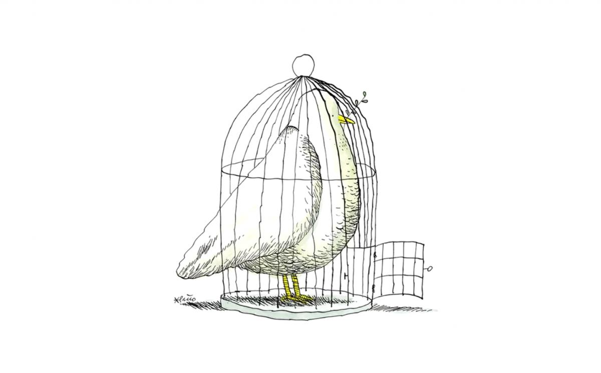 10 cursos imprescindibles de Domestika. Dibujo, animación, diseño web…
