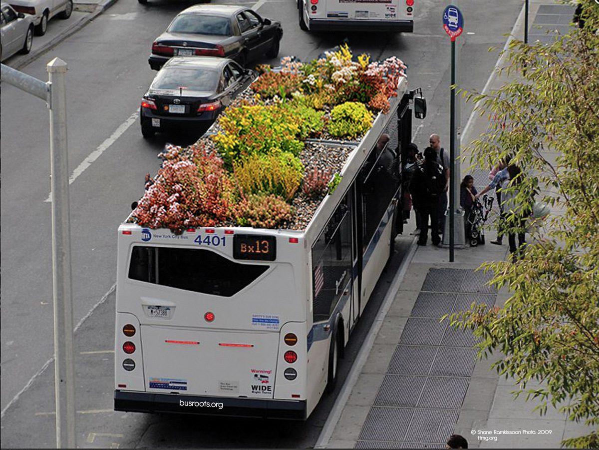 Bus Roots, el autobús con techo para cultivar alimentos y plantas, Marco Castro Cosio, Nueva York,