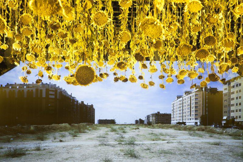 Agostamiento, Basurama para Abierto x Obras, Matadero Madrid, 2016