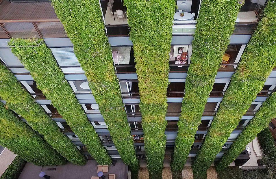 Ignacio solano crea el jard n vertical m s grande el mundo - El jardin vertical ...