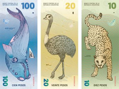 Rediseño papel moneda argentino, de Gabriela Lubiano y Gilda Martini