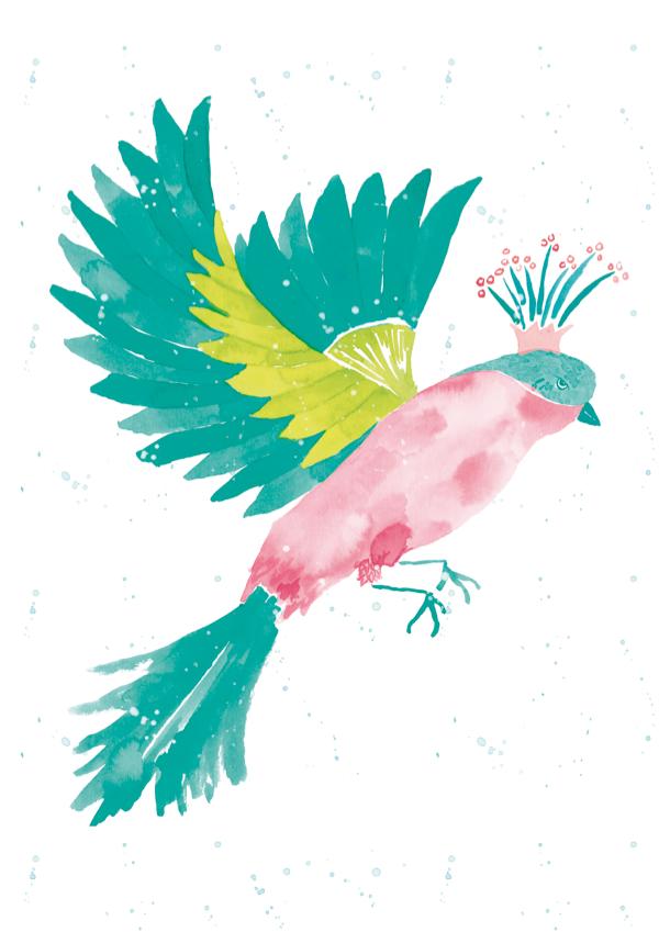 Fundación Altarriba, ilustración, 2017