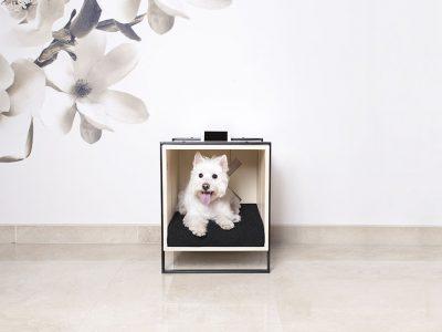 Colección de mobiliario para perros de Full Loft Madrid