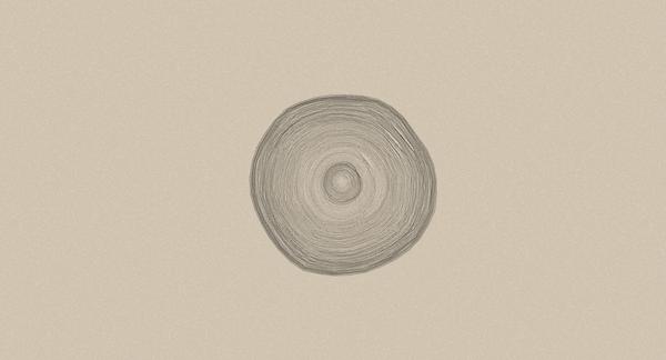 La corteza de un árbol es el elemento central del diseño