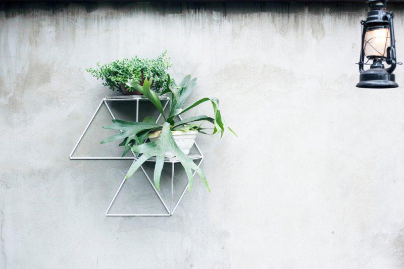 Garden Module, el jardín vertical de Luisa + Lilian Parrado. Fotografía: Bruna Hosti (cortesía v2com)