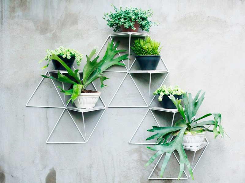 Garden Module, el jardín vertical de Luisa y Lilian Parrado