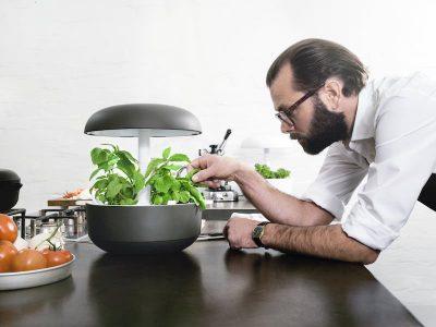 Plantui, un cultivo inteligente y casero