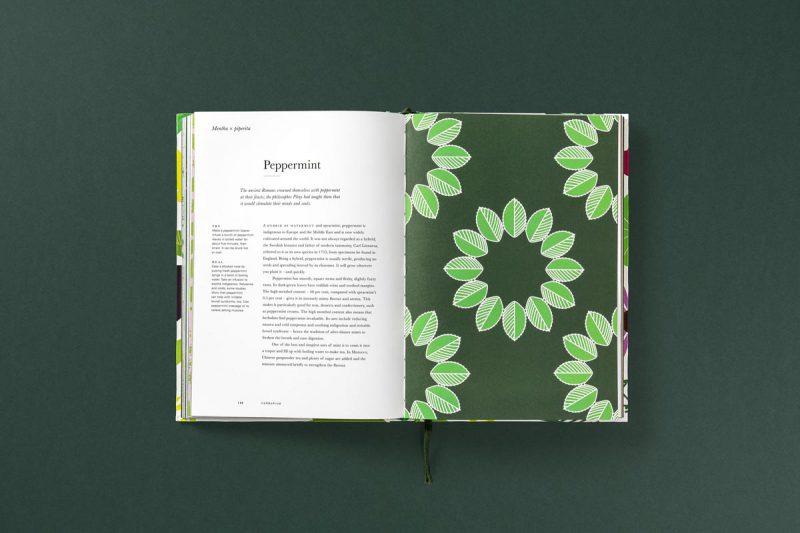 Herbario, un homenaje al mundo de las hierbas de estudio Here