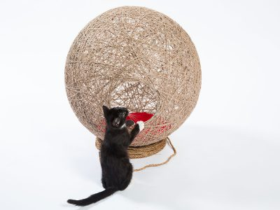 'Guiving Shelter' de Architects for Animals. Ball of Twine, de Abramson Teiger Architects. Fotografía: Meghan Bob.
