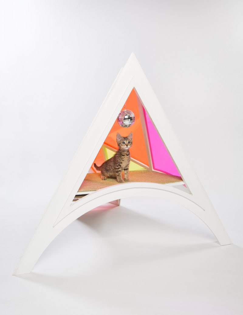 'Guiving Shelter' de Architects for Animals. CallisonRTKL. Fotografía: Meghan Bob.