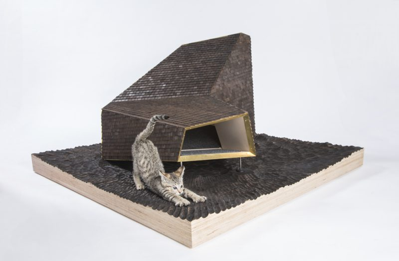 'Guiving Shelter' de Architects for Animals. Knowhow Shop. Fotografía: Meghan Bob.