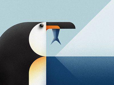 Animals, fauna ilustrada en el proyecto del estudio serbio Braca Burazeri