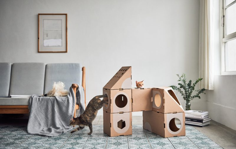 Room Collection de A Cat Thing