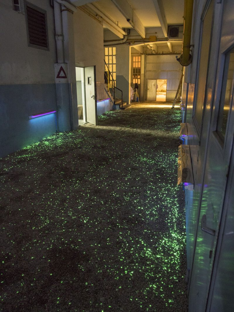 People are light. La instalación del IED Barcelona y Fluvia para el Llum BCN 2018.