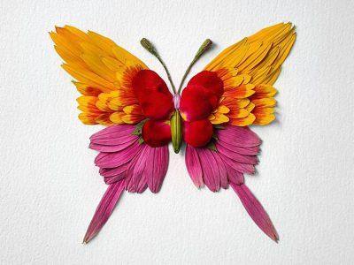 Natura Insects, 2018, Raku Inoue