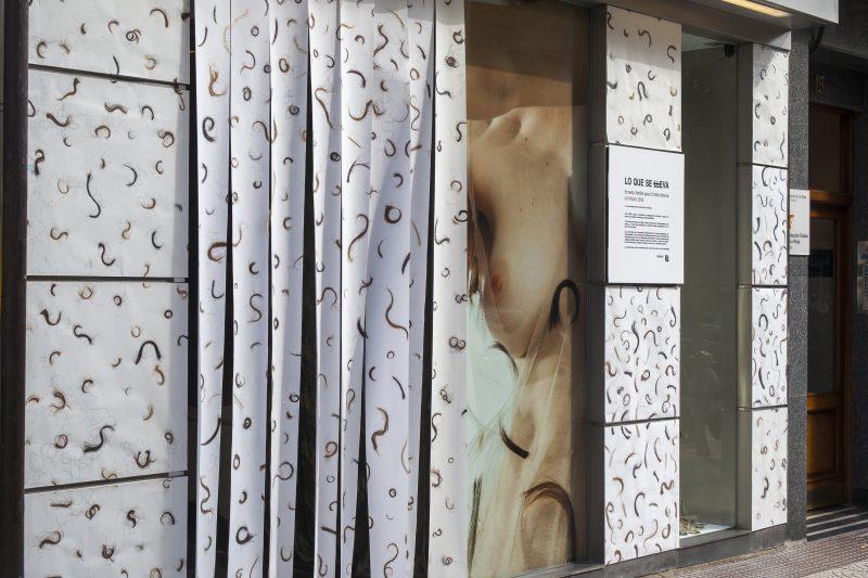Lovisual vuelve a transformar las calles de Logroño en una galería de arte